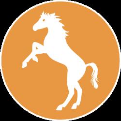 Logo Camping Village Cavallino